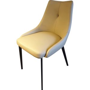 B1007 Dining Chair