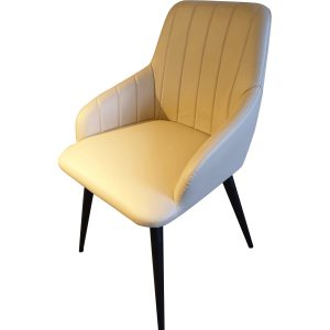 TS519 Dining Chair