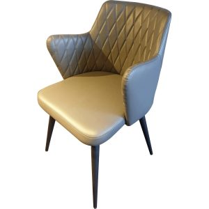 TS520 Dining Chair